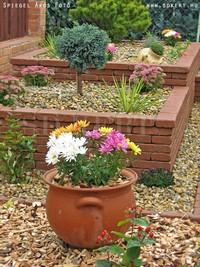 Ékszerdoboz kert