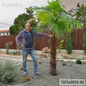 Élhető, könnyen ápolható és szép kert