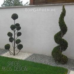 Forma és alak növények