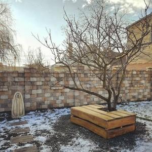 Kertépítés télen
