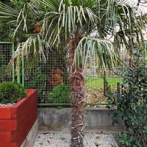 Kerti ötletek, kerti dekorációk