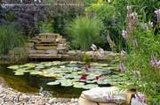 Milyen kertet válasszunk?