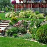Lépcsős kert