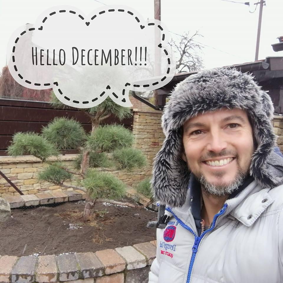 Helló december! Kertépítés télen
