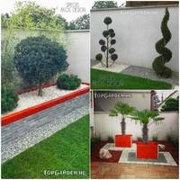 Ilyen volt, ilyen lett kert - modern kerti st�lus