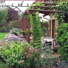 Színes kertek
